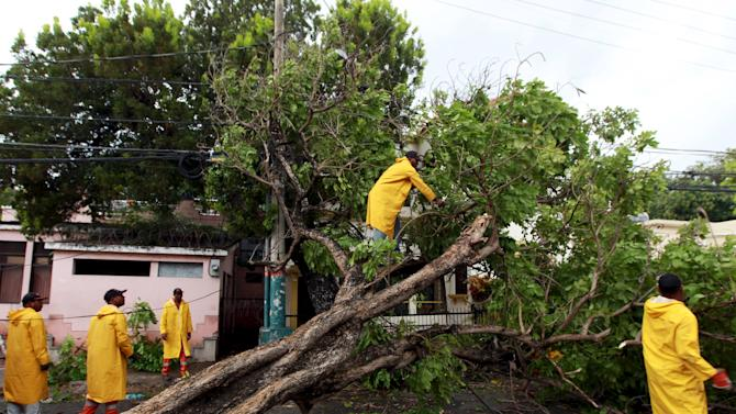 City workers cut a tree that fell when Tropical Storm Erica hit the area with heavy rains in Santo Domingo, Dominican Republic