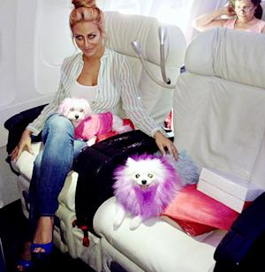 "Aubrey O'Day Brings ""Emotional Support"" Dogs On Flight For Mental Illness"