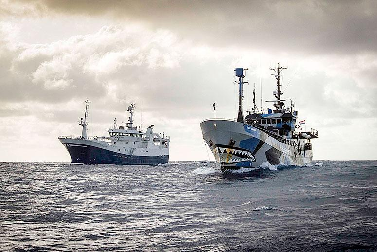 Sea Shepherd Is Hunting the Last of the World's Most Notorious Poaching Vessels