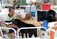 Joe Howe (L), owner of Pet Cruise, tends to dogs before a boat tour in Singapore, on January 20, 2013. From boat cruises and spas to their own obituary section in the leading newspaper, lucky pets are being pampered in a big way in Singapore, a city-state with one of Asia&#39;s highest standards of living