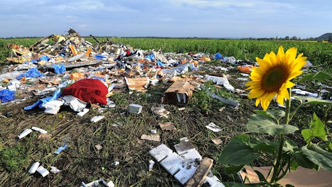 The wreckage of Malaysia Airlines flight MH17 that crashed near the village of Rassipnoe in rebel-held east Ukraine on July 17, 2014