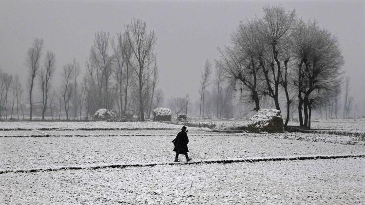 A Kashmiri man walks through a paddy field covered with snow during the season's first snowfall on a cold winter morning in Srinagar