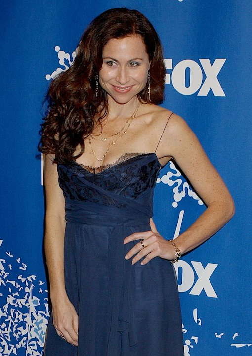 Minnie Driver at the 2007 Fox All-Star Winter TCA Party.