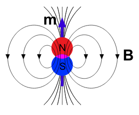 magnetic dipole