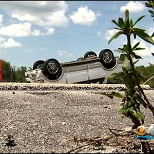 Child, 8, Dies In Crash On Alligator Alley