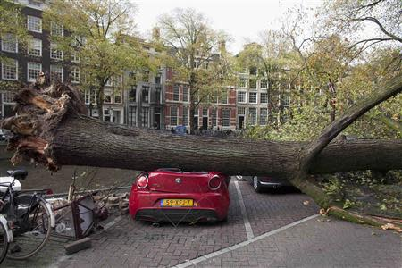 A tree that fell on and killed a woman along a street, lies on a car next to the Herengracht canal in Amsterdam