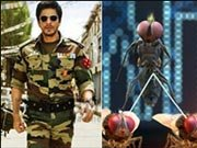 Why is MAKKHI wowing stars like Shahrukh Khan and Ajay Devgn?