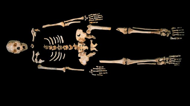 'Pit of Bones' Yields Oldest Known Human DNA (ABC News)