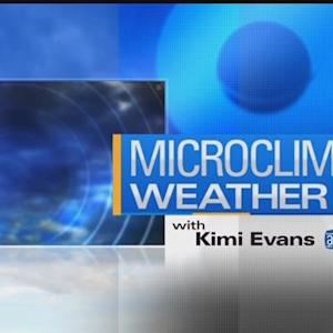 MicroClimate Forecast: Thursday, May 21, 2015