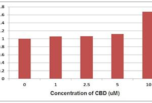 Cannabidiol Tincture Depression
