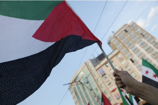 A Pro-Palestinian activist waves a Palestinian flag during the second anniversary of the Mavi Marmara Gaza flotilla incident in Istanbul