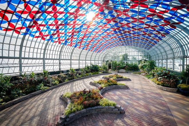 Massive Light Installation Illuminates the Garfield Park Conservatory