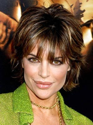 Premiere: Lisa Rinna at the Hollywood premiere of Warner Bros. Pictures' Batman Begins - 6/6/2005