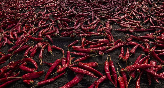 Hottest Chillies in India
