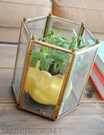 Lantern Turned Planter