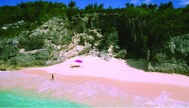 Pink Sands Beach (Bahamas)