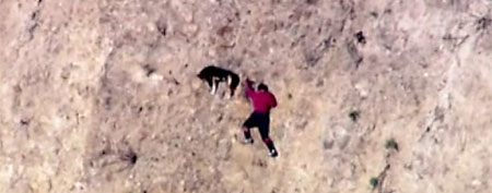 Man and his dog trapped on hillside (ABC News)