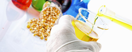 Genetically modified foods (ThinkStock)