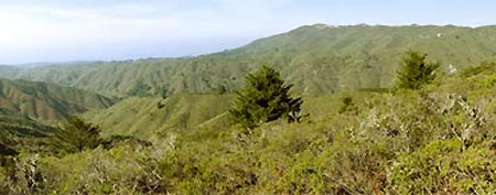 View of Rancho Corral de Tierra in Montara, Calif. (NPS/Kirke Wrench)