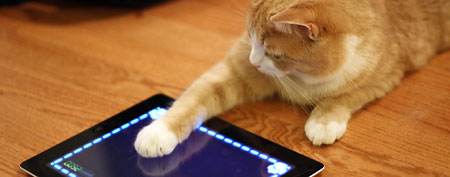 Cat playing with iPad. (Flickr/Mak-On)