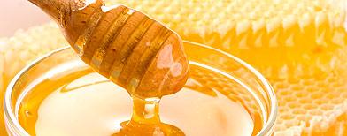 A honeycomb (Fotolia)