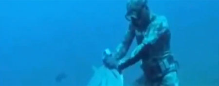 Diver attacked in dramatic underwater clash. (GrindTV.com)