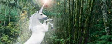 So, who wants to ride a unicorn in Ulu Yam?