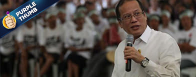 Palace: 'Public service' not electioneering
