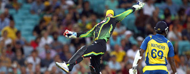 Editor's Pick: The Best Cricket Pics