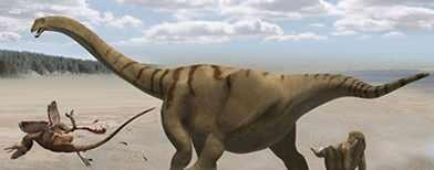 How dinosaurs grew incredibly long necks