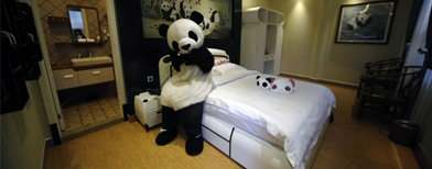 See the world's first panda-themed hotel