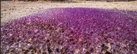 Gooey purple blobs in desert spark mystery