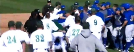 Brawl at baseball game disgusts (most) fans