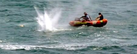 'Huge' shark kills New Zealand swimmer