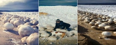 'Snowballs on steroids' litter lake's shore