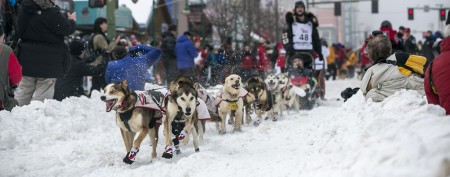 Iditarod gets mushing with pregame party