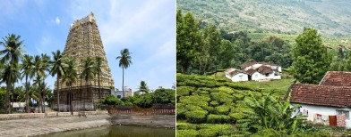 Travel: 50 things to do in Tamil Nadu