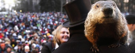 Groundhog in hot water over botched forecast