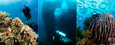 10 best dive spots in the Philippines