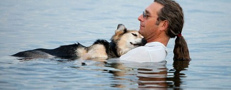 Arthritic dog from iconic photo dies