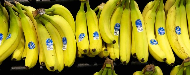 Why your bananas might be in trouble