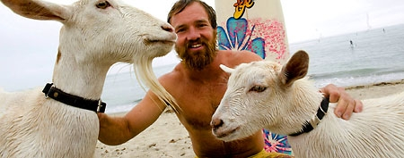 Dana McGregor and his surfing goats (AP Photo/The Orange County Register, Rod Veal)