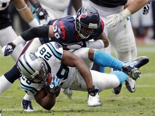 Newton, Panthers end Texans' win streak at seven