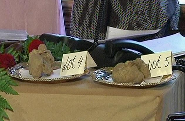 In this frame grab made off APTN video footage, a pair of truffles are placed on a table at a charity auction in Macau. Billionaire Stanley Ho bid US$330,000 for the pair of white truffles, including one weighing nearly a kilogram.
