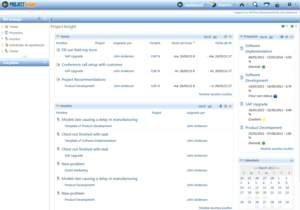 Project Insight's Project Management Software Enables Translation Into Any Language