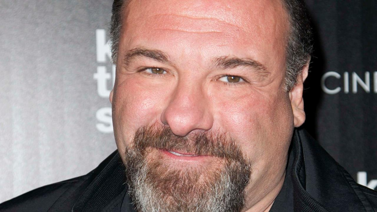 James Gandolfini passed away after suffering a massive heart attack in Italy on Jun 19, 2013. He was touring the country with his 13 year old son. He leaves behind his wife Deborah Lin, his son Michael, and daughter Liliana.