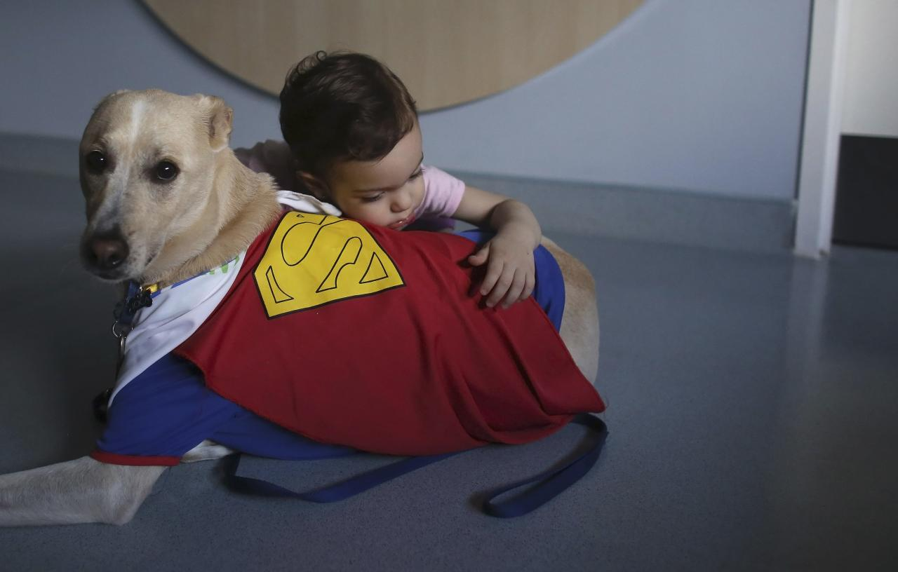 Patient Isabelle Stadella hughs Joca, a therapeutically trained dog, during a therapy session at Hospital Infantil Sabara in Sao Paulo October 18, 2013. A therapy dog is a dog trained to provide affection and comfort to patients in hospitals. Picture taken October 18, 2013. REUTERS/Nacho Doce (BRAZIL - Tags: ANIMALS HEALTH SOCIETY TPX IMAGES OF THE DAY)