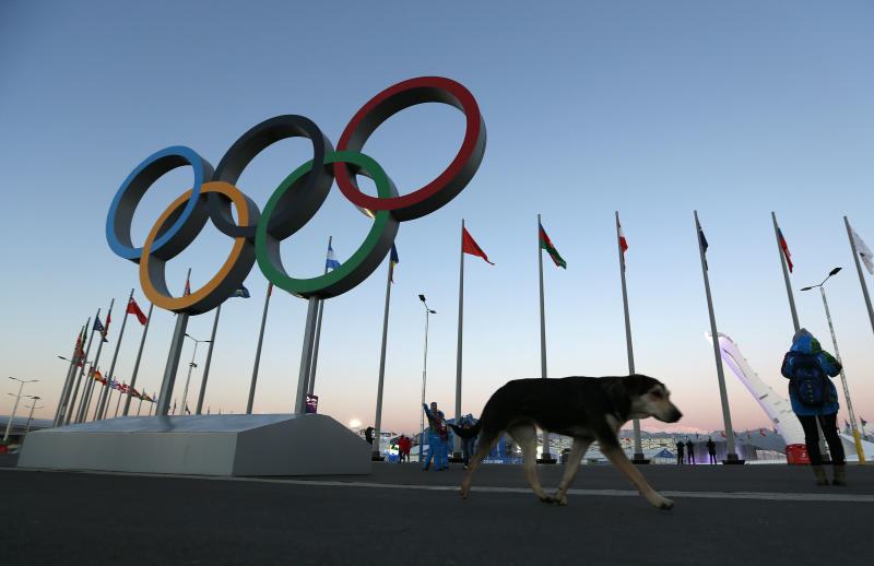More than half Americans plan to follow Olympics