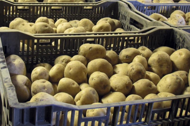Vt. prison inmates process holiday potatoes