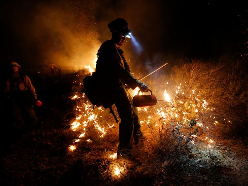 Firefighter, wild fire, California, forrest